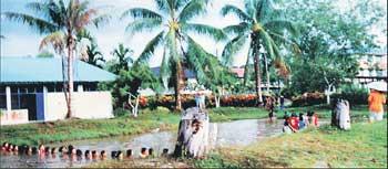 students-in-ponds.jpg